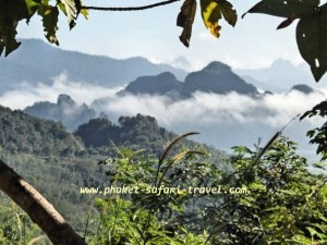 Khao Sok National Park Phuket Safari Travel